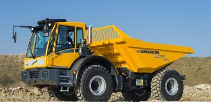 Bergmann Dumper 3012R